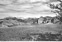 Hemberg_1950